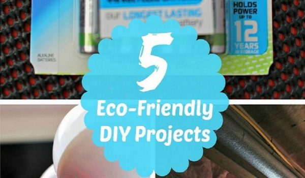 5 Eco Friendly Projects
