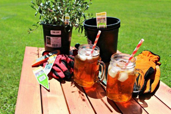 Iced Tea Break with Bigelow Iced Tea