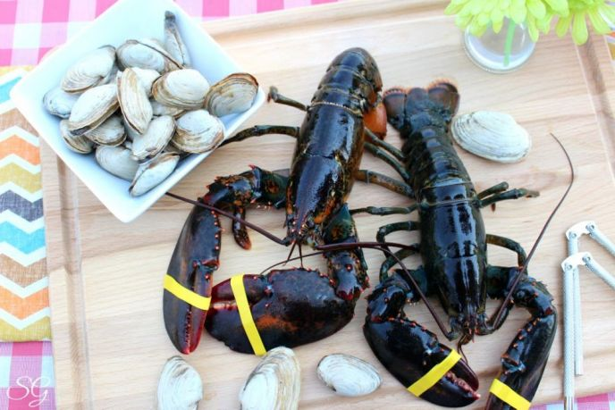 Maine Lobsters and Steamers