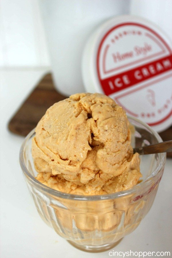 Simple Pumpkin Pie Ice Cream Recipe