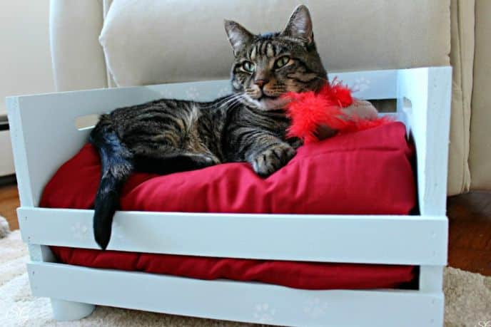 Diy wood crate cat bed for Homemade cat bed