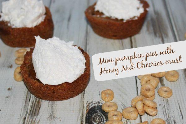 Mini Pumpkin Pie Recipe with a Honey Nut Crust