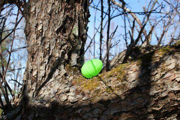 Outside Easter Egg Hunt