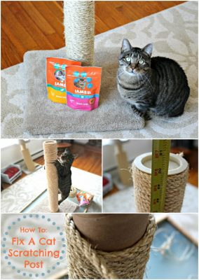 How to Re-Sisal and Fix a Cat Scratching Post