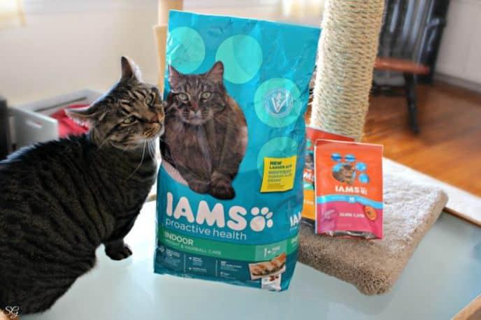 IAMS Proactive Health Cat Food and Turbo