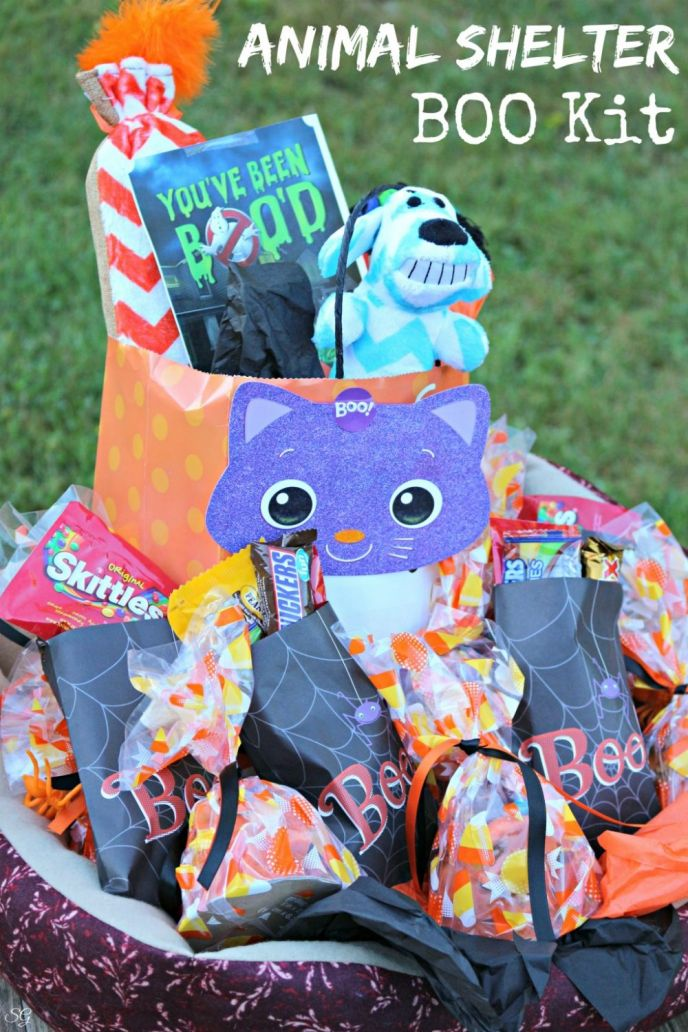 What is a BOO Kit? We'll show you, and show you how to BOO it Forward! We're BOO'ing an animal shelter with all sorts of fun treats for the animals and humans!