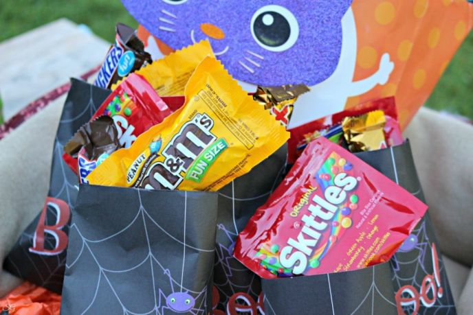 Halloween Treats for Humans at the Animal Shelter