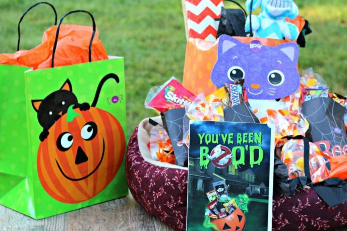 BOO Kit for Animal Shelter