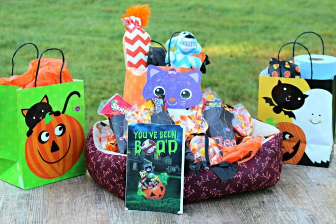 Animal Shelter Halloween BOO Kit Gift
