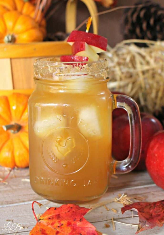 Spiked apple cider cocktail mixed drinks.