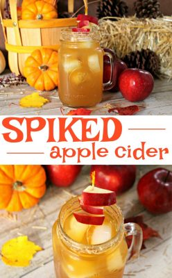 Spiked Apple Cider Cocktail Recipe! Check out this SUPER EASY spiked apple cider recipe with the flavors of cinnamon and apples - you'll love it!