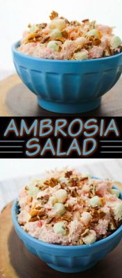 Ambrosia Salad Recipe! This EASY Ambrosia Salad Recipe is the recipe you've always wanted to try but haven't yet! It's time to change that and make this ambrosia salad recipe. This step-by-step tutorial for how to make ambrosia salad will walk you through the process. It's EASY!