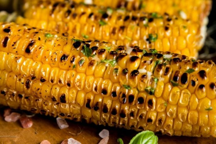 Grilling corn on the cob