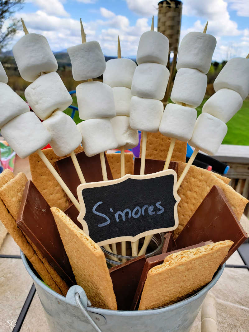 s'mores station for BBQ party!